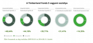 Timberland5ev
